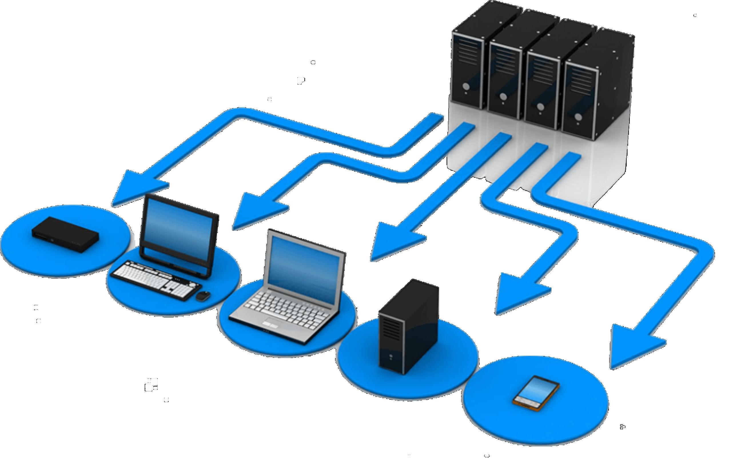 Bitline network